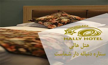 Hally Hotel